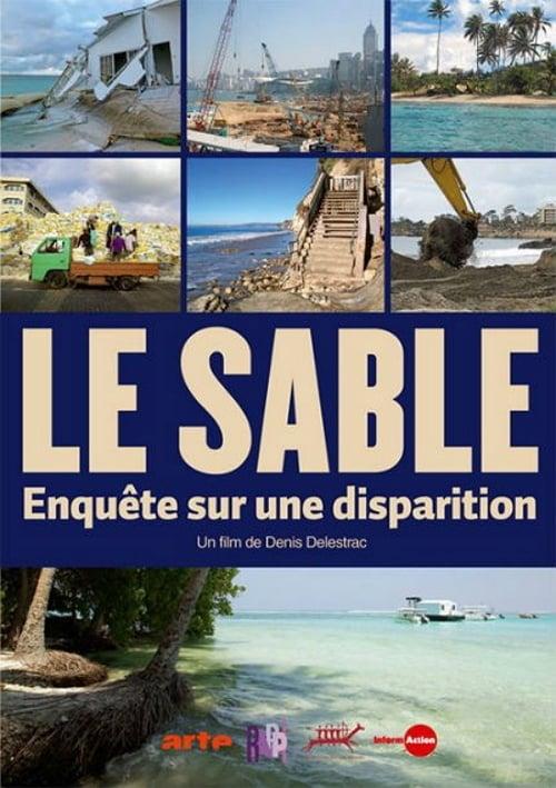 Le sable - Enquête sur une disparition (2013)