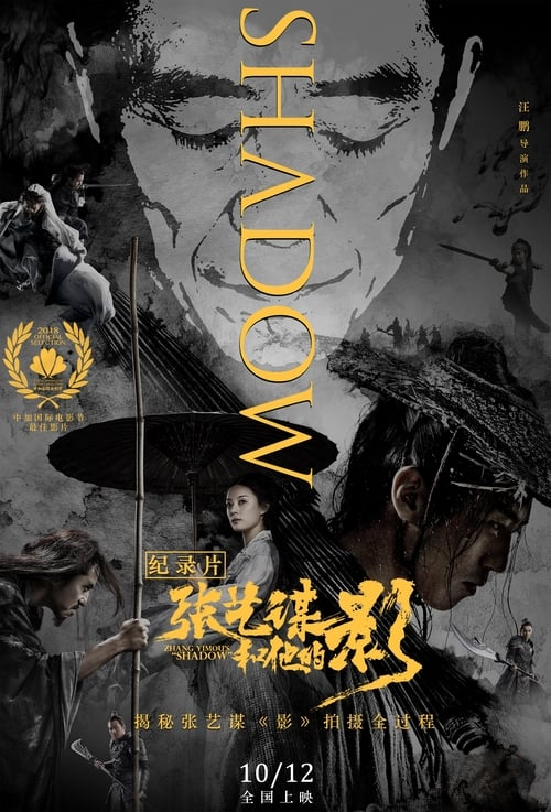 "Zhang Yimou's ""Shadow"""