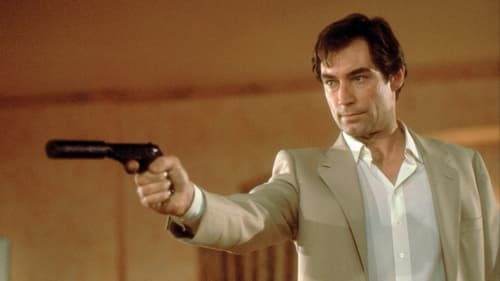 ПОЛУЧИТЬ СУБТИТРЫ 007: Искры из глаз (1987) в Русский SUBTITLES | 720p BrRip x264