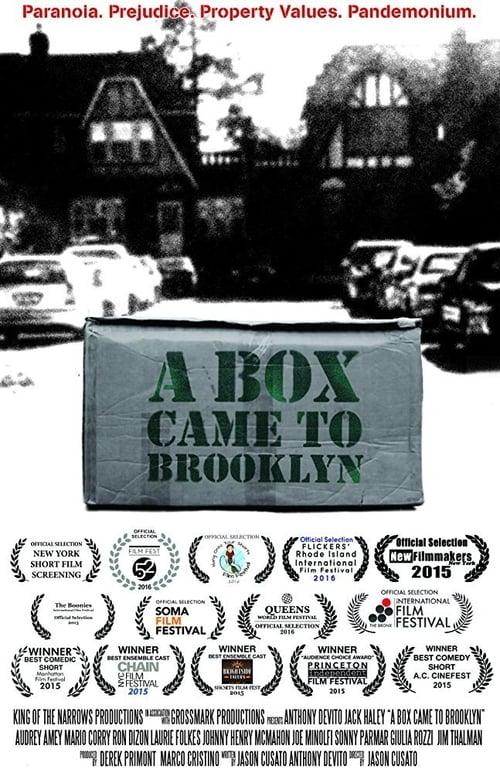 A Box Came to Brooklyn ( A Box Came to Brooklyn )