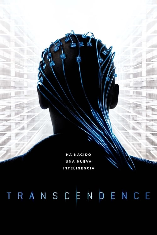 Mire Transcendence En Buena Calidad