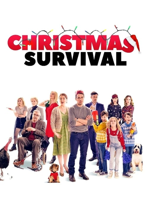 Christmas Survival Poster