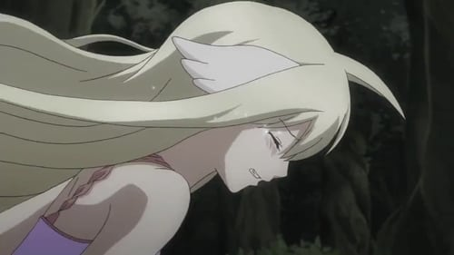Fairy Tail: Fairy Tail Zero – Episode Blue Skull