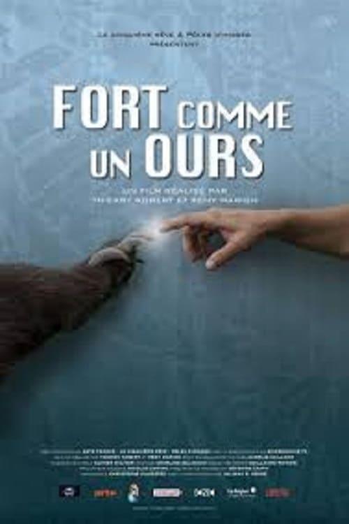 Película Fort comme un ours Con Subtítulos En Español