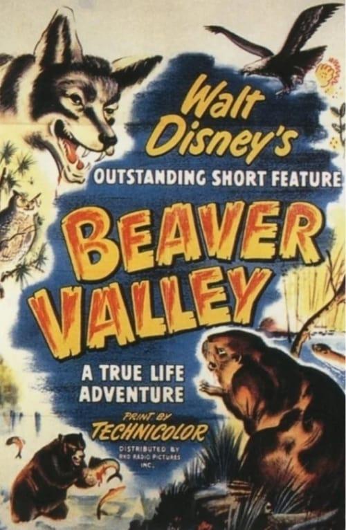 La valle dei castori