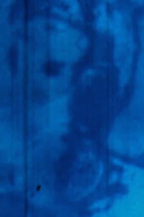 Rayures (Rayures, effacement / Disparition) (2005)