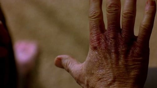 Breaking Bad - Season 2 - Episode 10: Over