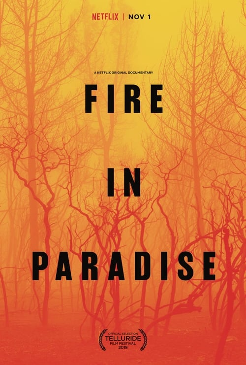 Why Fire in Paradise
