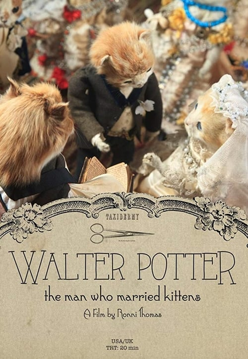 Assistir Walter Potter: The Man Who Married Kittens Completamente Grátis