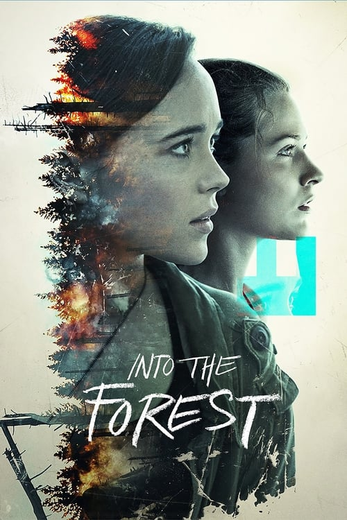 The poster of Into the Forest