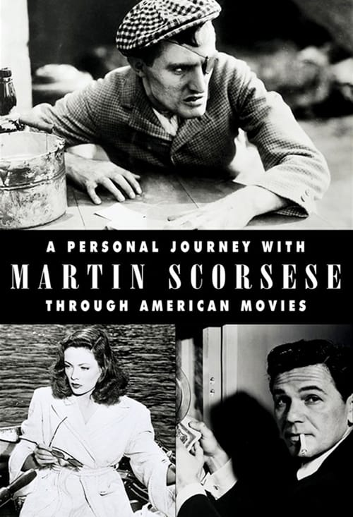 A Personal Journey with Martin Scorsese Through American Movies (1998)