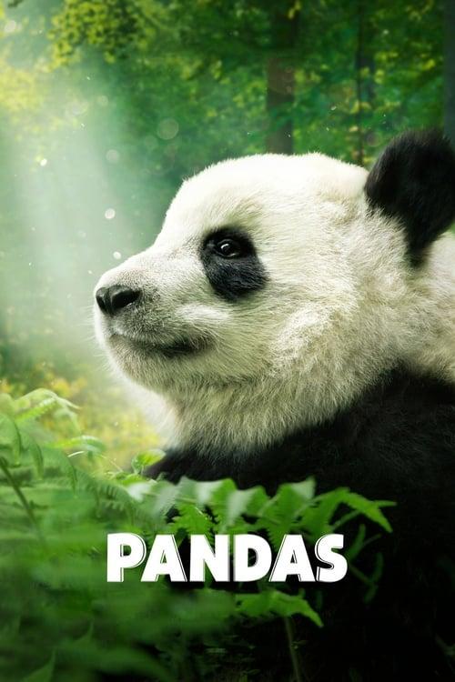 Pandas IMAX Movie Poster
