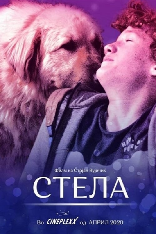 Stela English Full Movie Online Free Download
