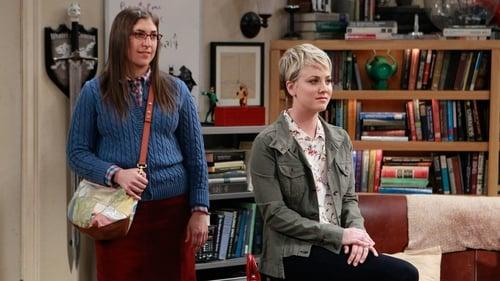 The Big Bang Theory - Season 8 - Episode 12: The Space Probe Disintegration