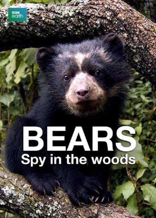 Bears: Spy in the Woods (2004)
