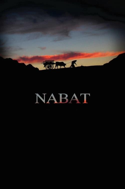Imagen Nabat