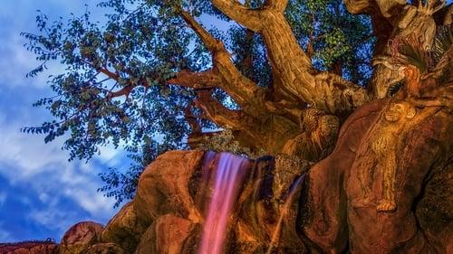 Poster della serie Disney Parks Sunrise Series