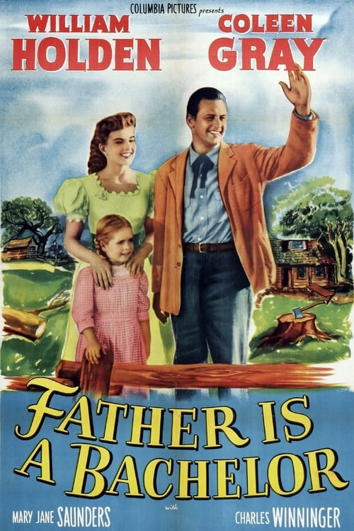Father Is a Bachelor poster