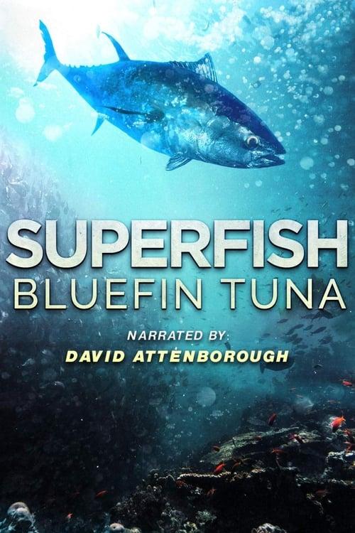 Assistir Superfish Bluefin Tuna Online Grátis