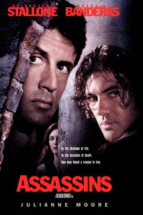 Streaming Assassins (1995) Movie Free Online