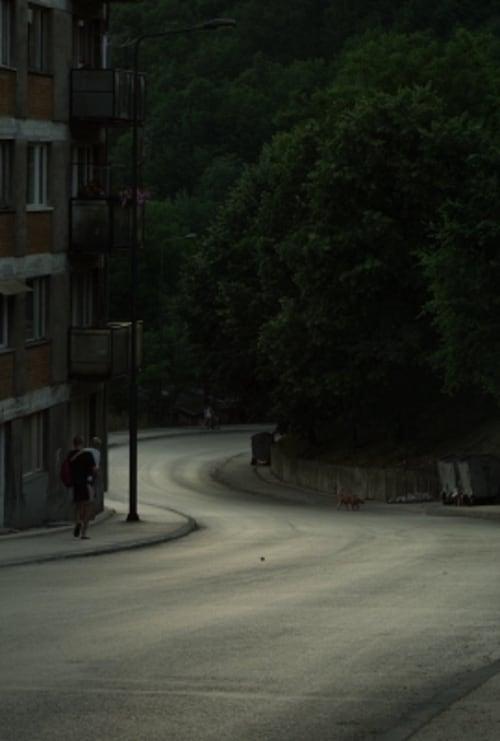 Mira La Película U međuvremenu Gratis En Línea