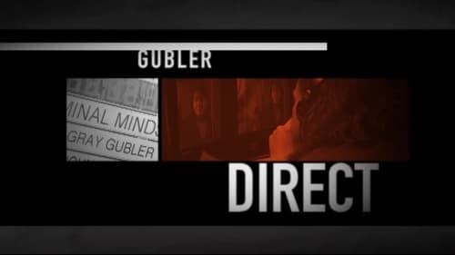 Criminal Minds: Specials – Épisode Gubler Direct