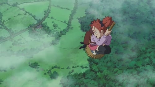 In detail here Mary and the Witch's Flower