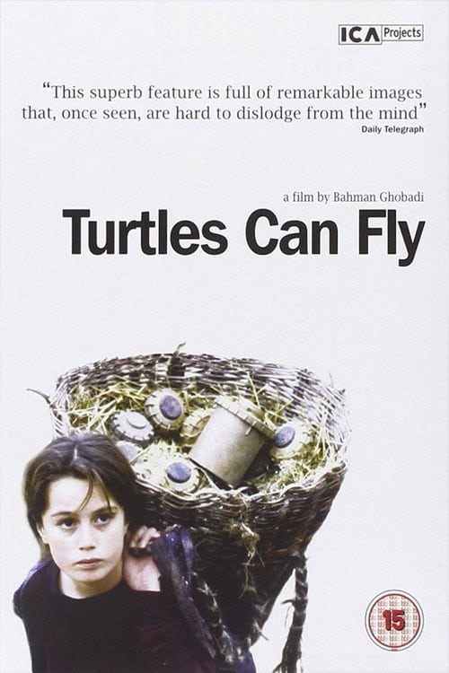 Largescale poster for Turtles Can Fly