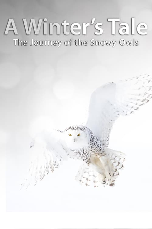 undefined ( A Winter's Tale: The Journey Of The Snowy Owls )