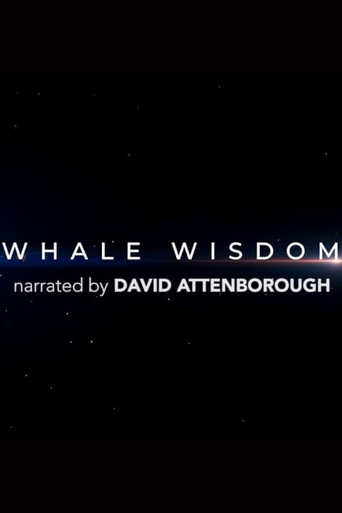 Filme Whale Wisdom Com Legendas On-Line