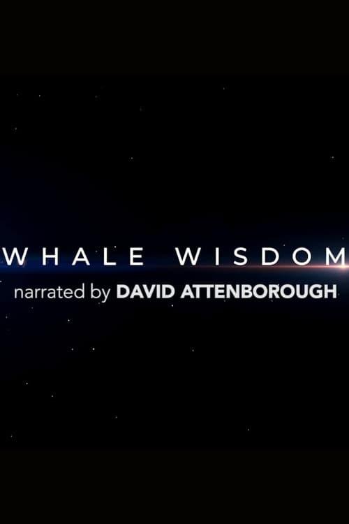 Filme Whale Wisdom Com Legendas On-Line