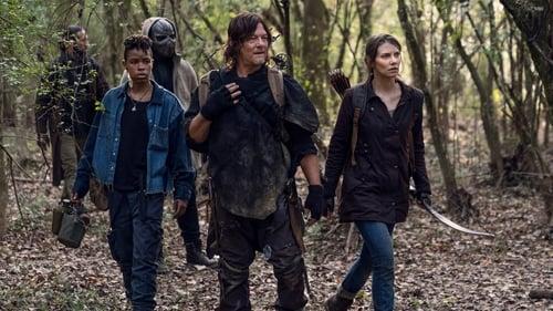 The Walking Dead - Season 10 - Episode 17: Home Sweet Home
