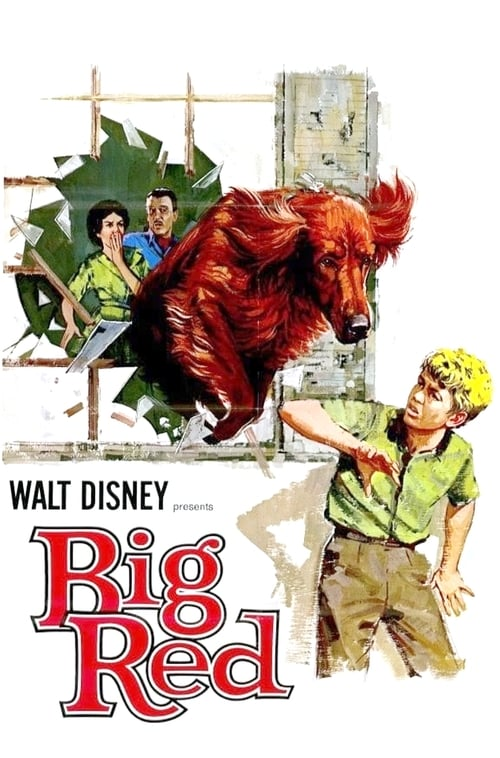 Big Red (1962) Poster