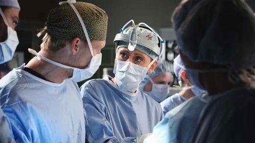 Grey's Anatomy - Season 7 - Episode 18: Song Beneath the Song
