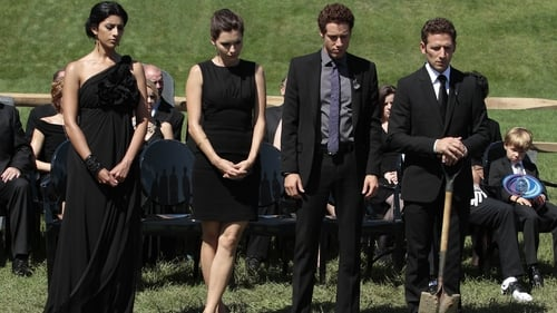 Royal Pains 2011 Streaming: Season 3 – Episode My Back to the Future