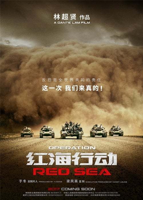 Watch Operation Red Sea Megashare