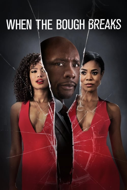 Download When the Bough Breaks (2016) Full Movie