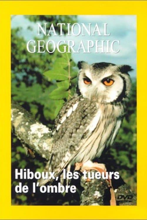 National Geographic Hiboux les tueurs de l'ombre (1970)