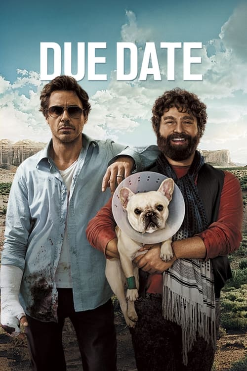 Due Date - Poster