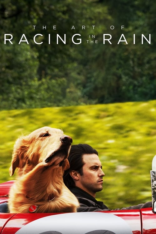 Poster. The Art of Racing in the Rain (2019)