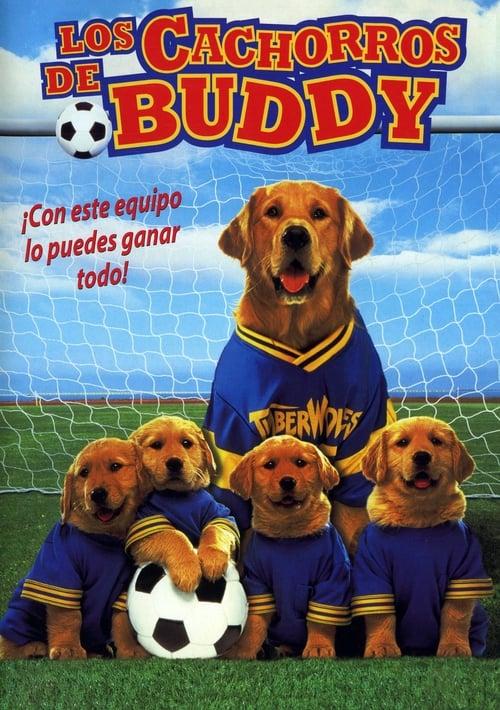 Mira La Película Air Bud 3: Los cachorros de Buddy Doblada Por Completo