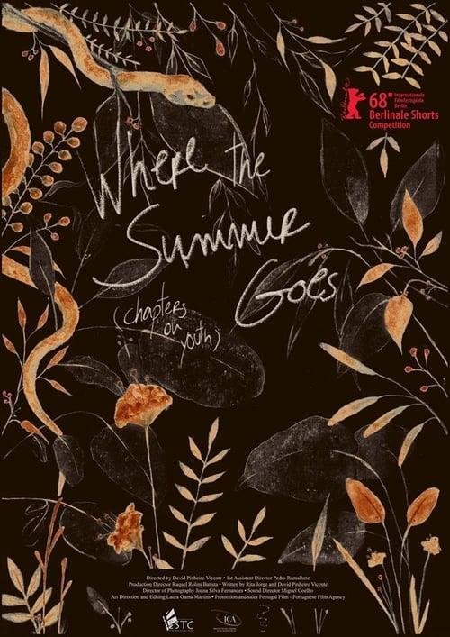 Where the Summer Goes (Chapters on Youth) (2018)