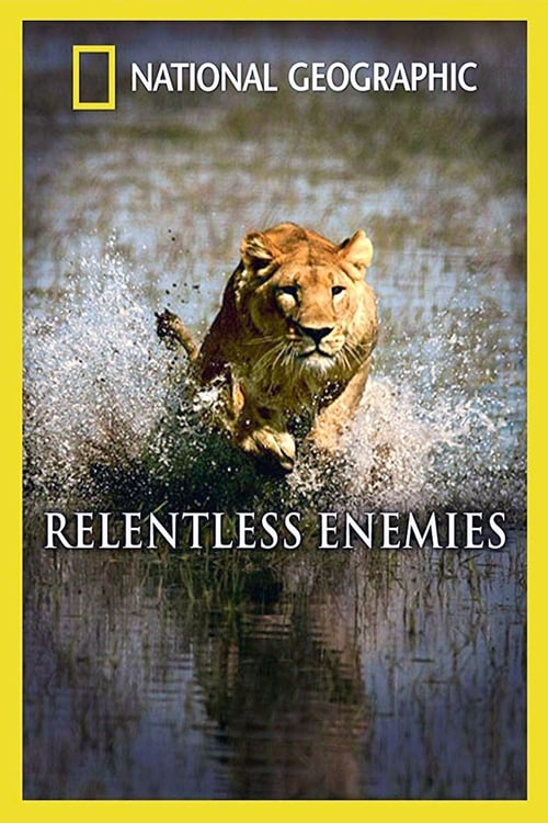 Relentless Enemies (2006)