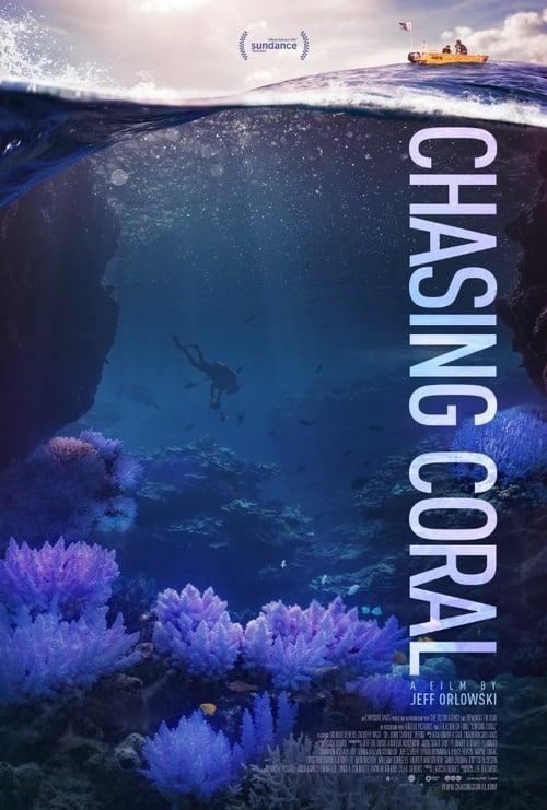 Mira En busca del coral En Buena Calidad Gratis