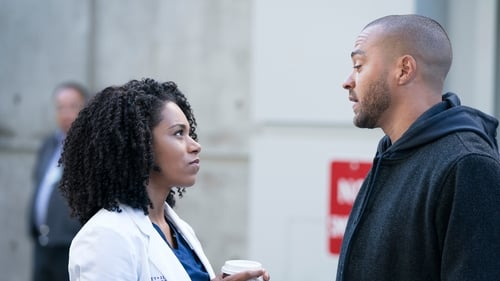 Grey's Anatomy - Season 14 - Episode 15: Old Scars, Future Hearts