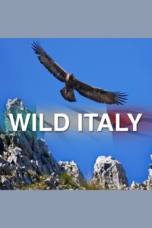 Wild Italy ( Wild italy )