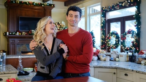 Watch Holiday Date Online HBO 2017 Streaming Free