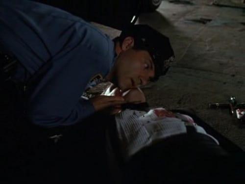 Law & Order: Season 1 – Épisode Happily Ever After