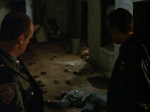 Law & Order: Season 1 – Épisode Poison Ivy