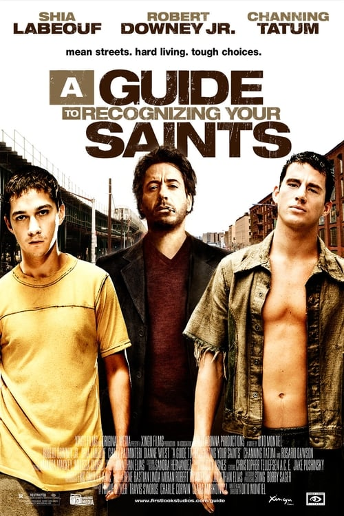 Watch A Guide to Recognizing Your Saints (2006) Best Quality Movie